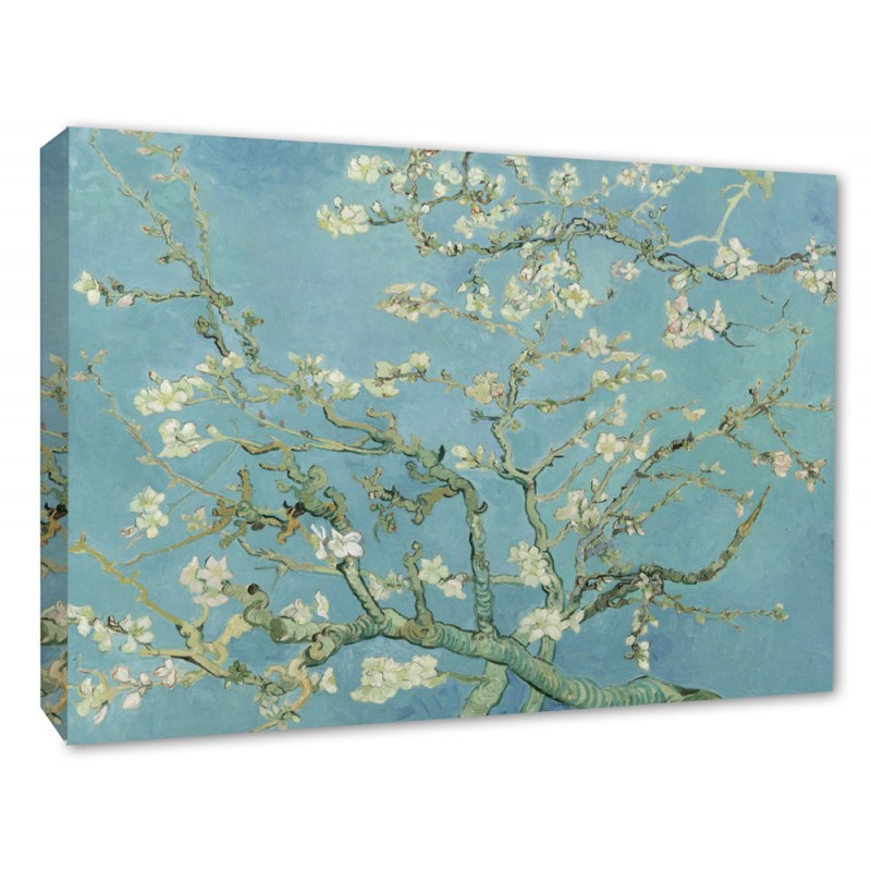 Vincent Van Gogh Almond Blossom Tree Picture