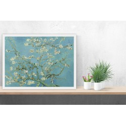 Van Gogh Almond Blossom Tree posters
